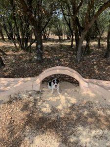 Aven grotte ofrestière mini golf chien à l'ombre