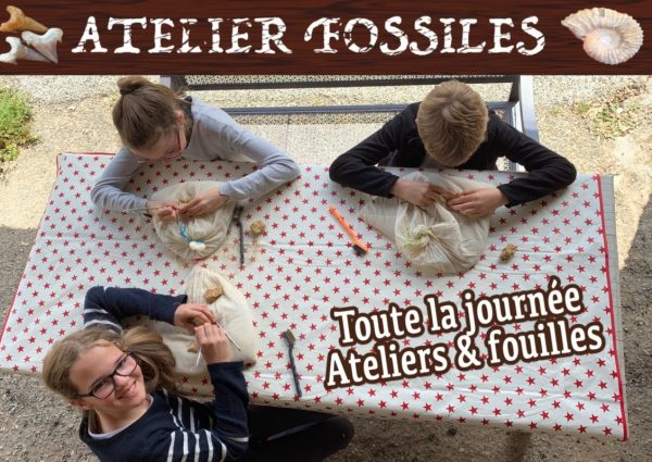Ateliers fossiles site internet