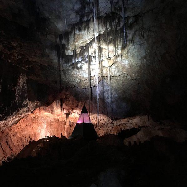 Aven grotte forestière Spélé'Hôtel + racines 2