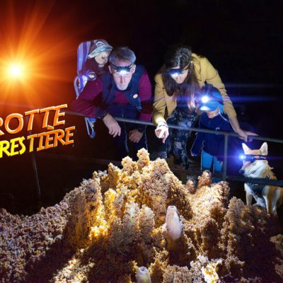 Site-Grotte forestière bébé+Enfant+chien 2020